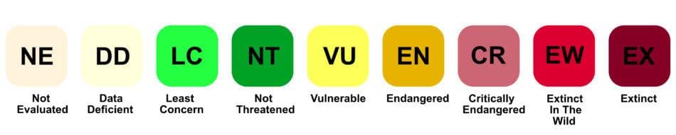 IUCN Colors