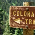Which Mammals Live In Colorado?
