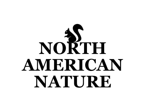 North American Nature